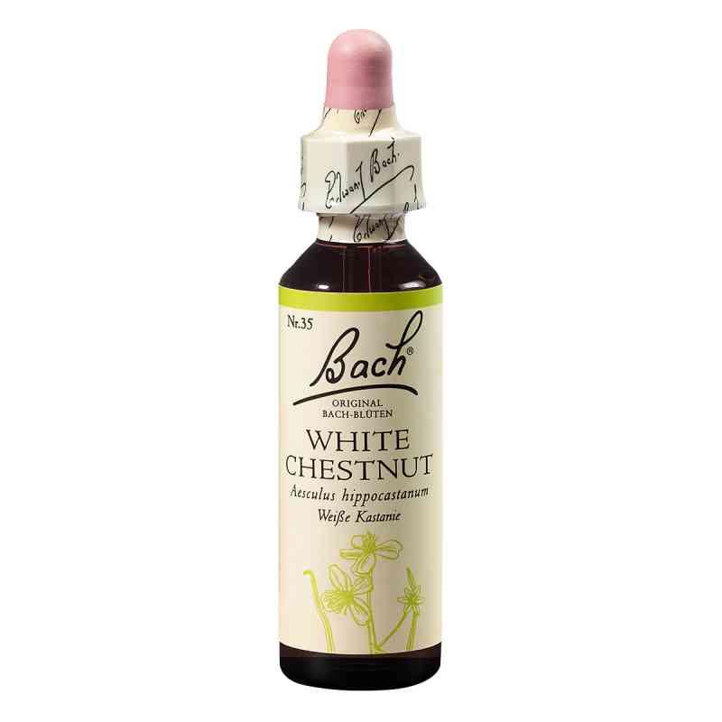 Bachblüten White Chestnut Tropfen  bei Apotheke.de bestellen