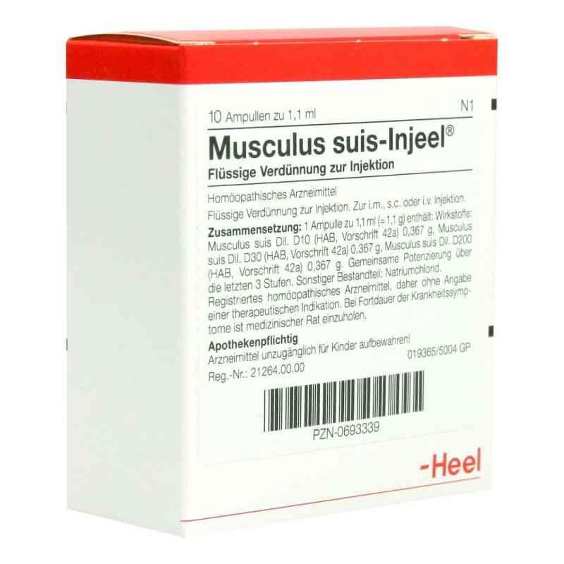 Musculus suis Injeel Ampullen  bei Apotheke.de bestellen