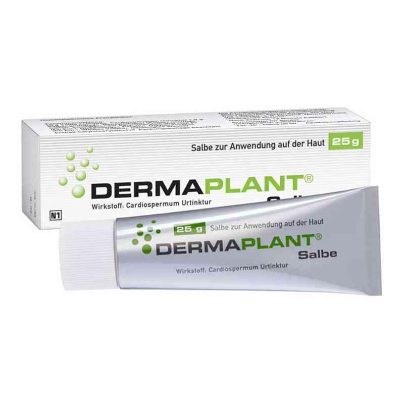 Dermaplant Salbe  bei Apotheke.de bestellen