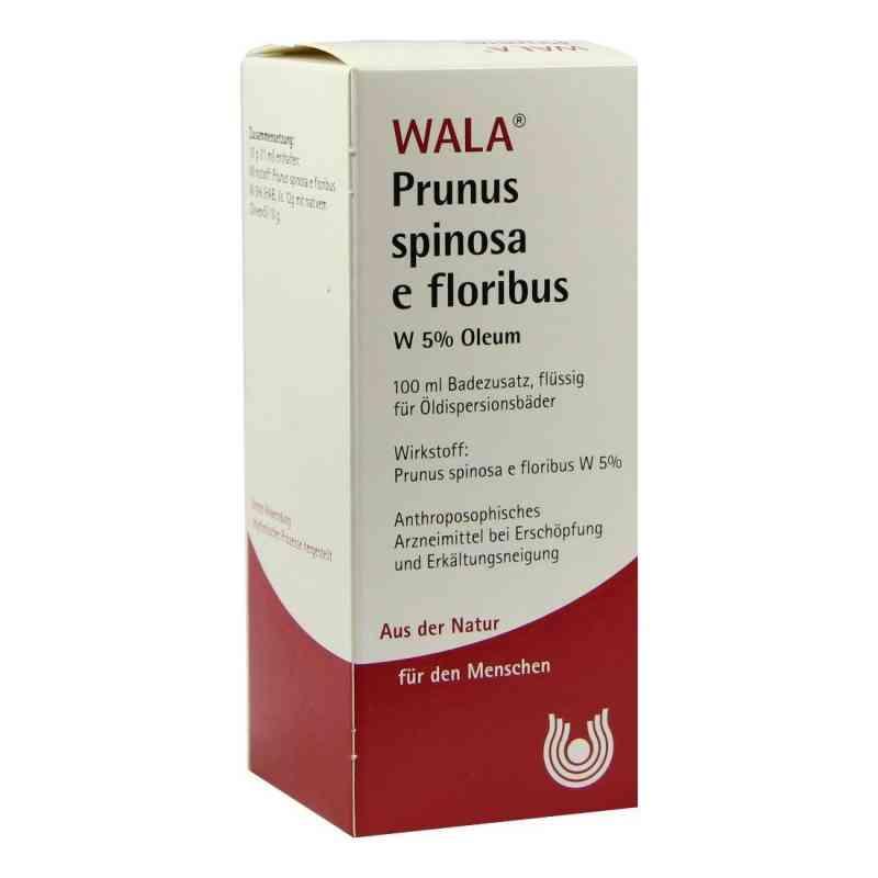 Prunus Spinosa E Flor. W 5% Oleum  bei Apotheke.de bestellen