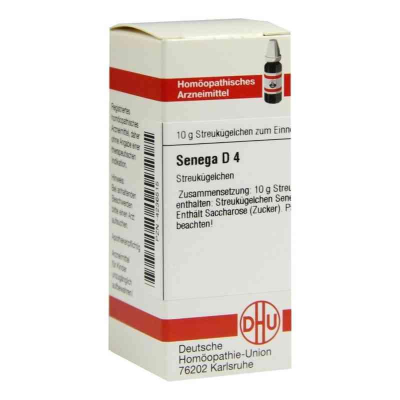 Senega D 4 Globuli  bei Apotheke.de bestellen