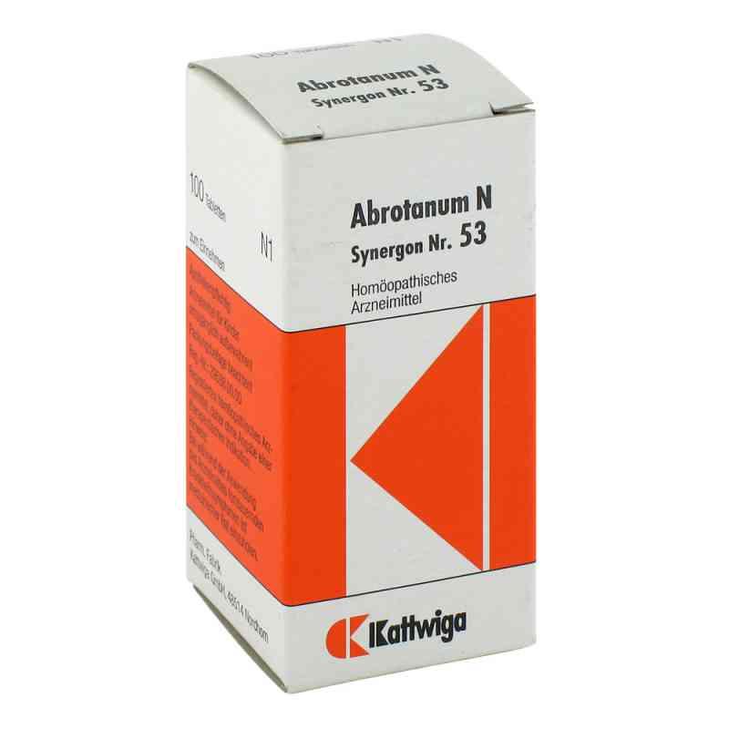 Synergon 53 Abrotanum N Tabletten  bei Apotheke.de bestellen