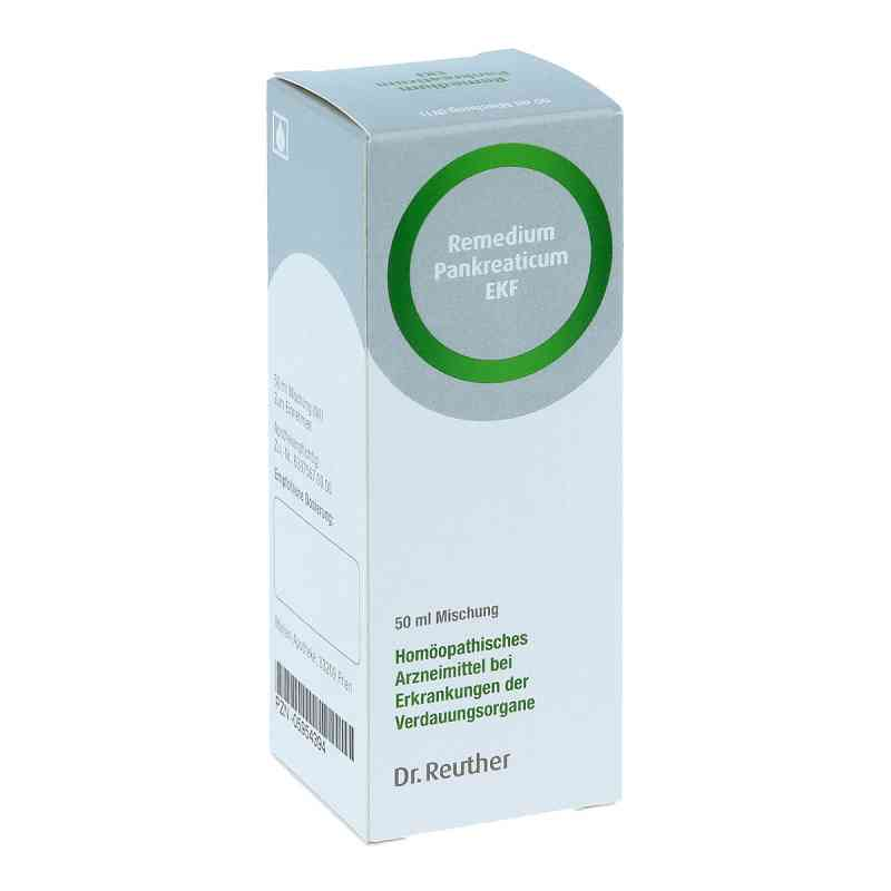 Remedium Pankreaticum Ekf flüssig  bei Apotheke.de bestellen