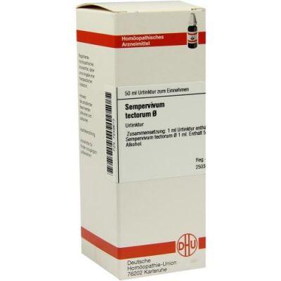 Sempervivum Tect. Urtinktur  bei Apotheke.de bestellen