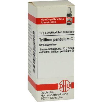 Trillium Pendulum C 30 Globuli  bei Apotheke.de bestellen