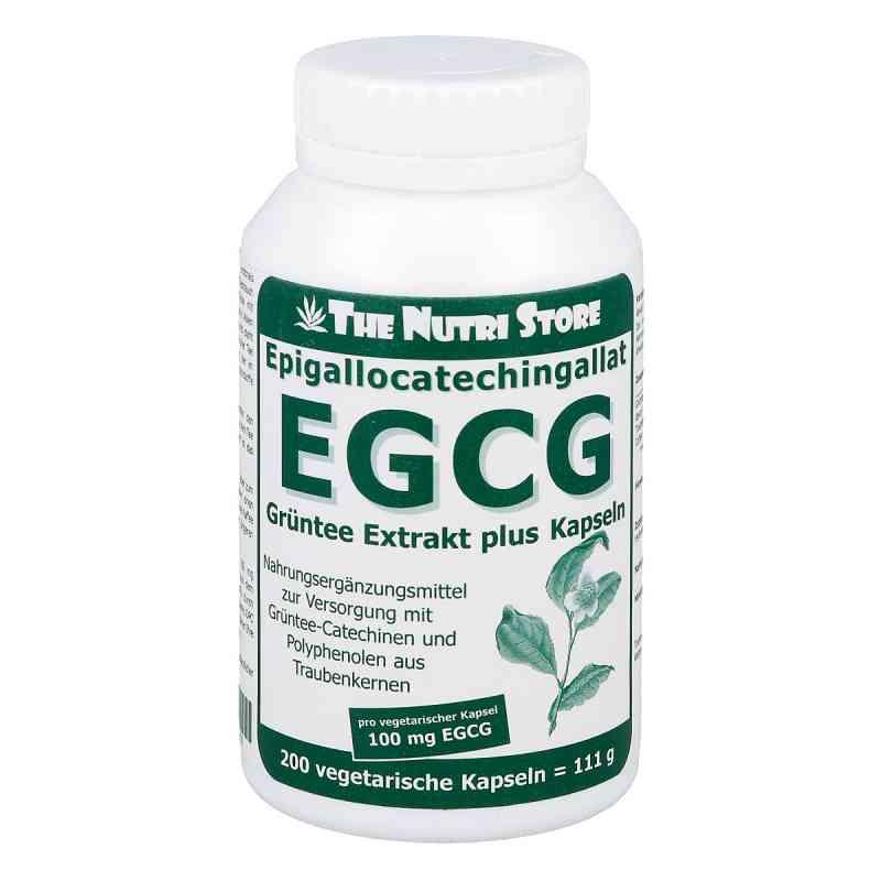 Egcg 100 mg Grüntee Extrakt plus Kapseln  bei Apotheke.de bestellen