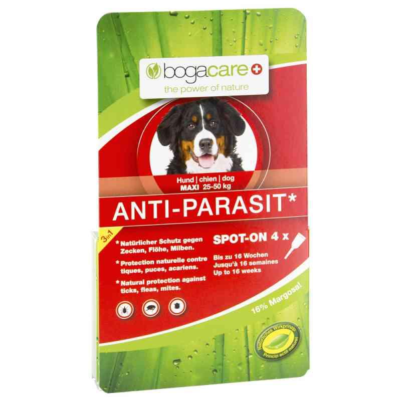 bogacare anti parasit spot on hund gross 4x2 5 ml ihre. Black Bedroom Furniture Sets. Home Design Ideas