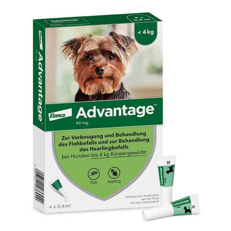Advantage 40 für Hunde Lösung  bei Apotheke.de bestellen