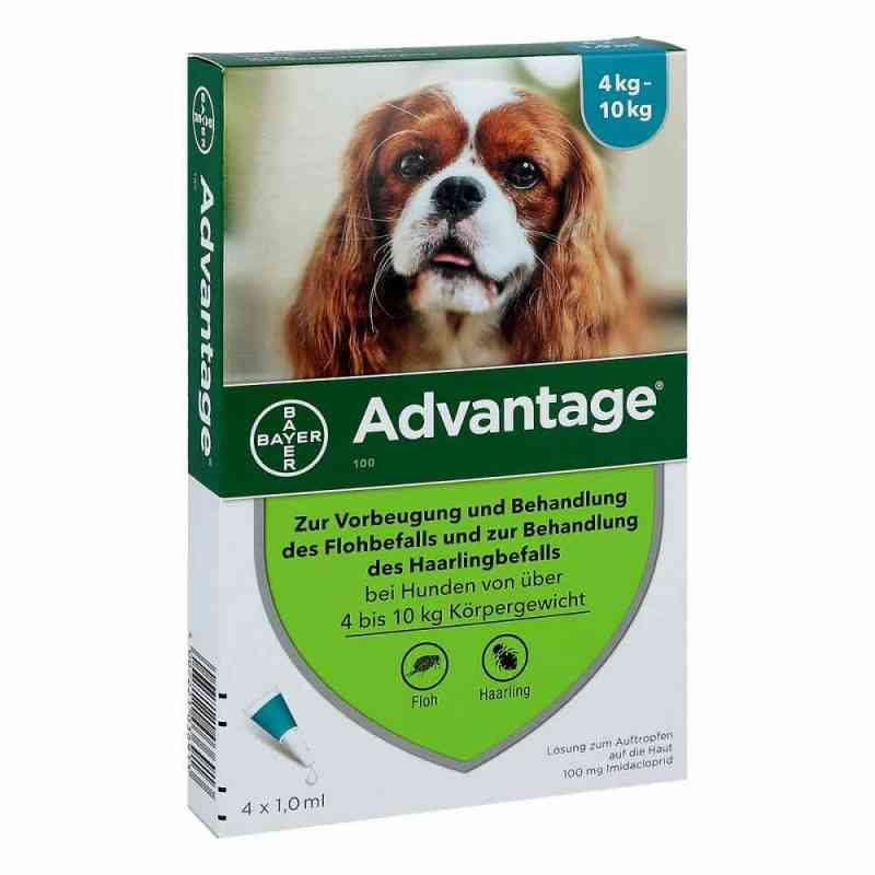 Advantage 100 für Hunde Lösung  bei Apotheke.de bestellen