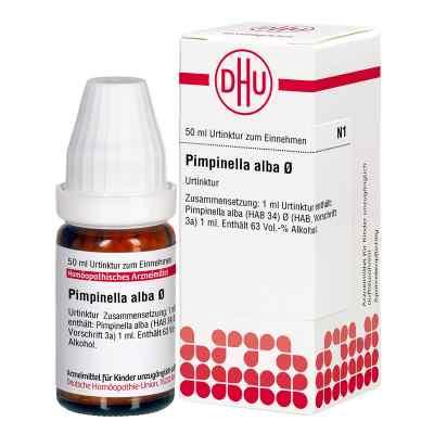 Pimpinella Alba Urtinktur  bei Apotheke.de bestellen