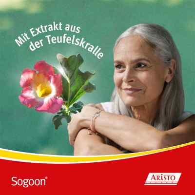 Sogoon - mit Teufelskralle  bei Apotheke.de bestellen