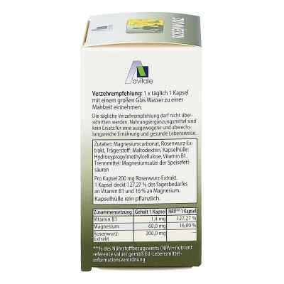 Rosenwurz Kapseln 200 mg  bei Apotheke.de bestellen