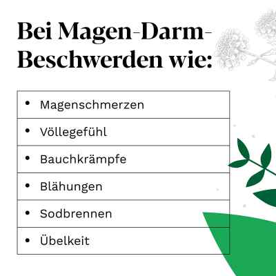 Iberogast bei funktionellen Magen-Darm-Beschwerden  bei Apotheke.de bestellen