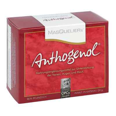 Opc Original Masqueliers Anthogenol Kapseln  bei Apotheke.de bestellen