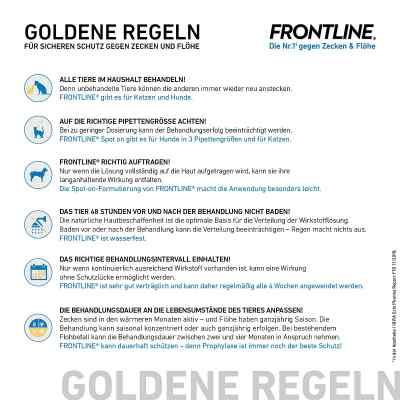 Frontline Spot on Hund 10 veterinär Lösung gegen Floh und Zecke  bei Apotheke.de bestellen