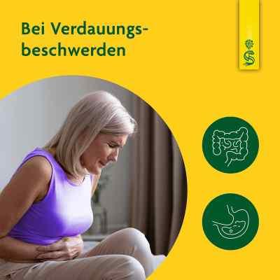 Artischockensaft Schoenenberger  bei Apotheke.de bestellen