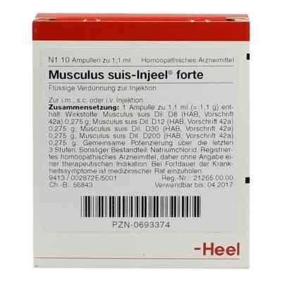 Musculus suis Injeel forte Ampullen  bei Apotheke.de bestellen