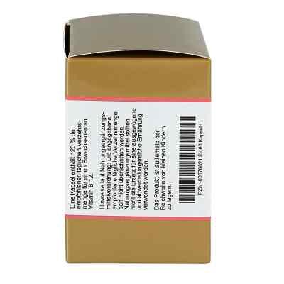 Vitamin B12 Kapseln  bei Apotheke.de bestellen