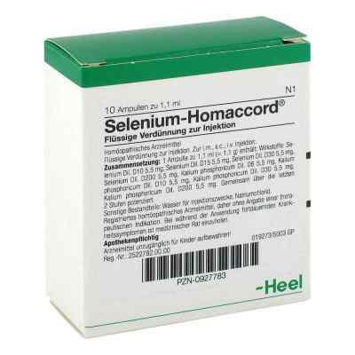 Selenium Homaccord Ampullen  bei Apotheke.de bestellen