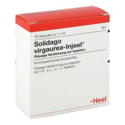 Solidago Virgaurea Injeel Ampullen  bei Apotheke.de bestellen