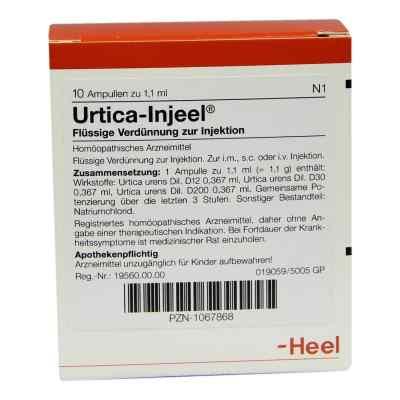 Urtica Injeel Ampullen  bei Apotheke.de bestellen