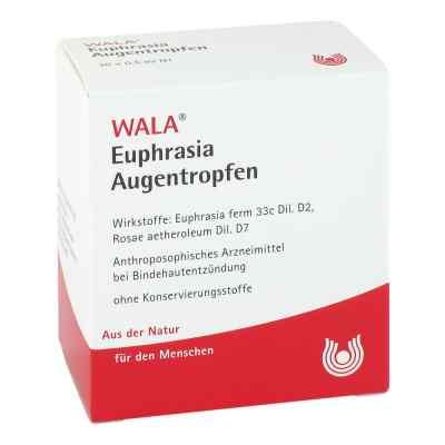Euphrasia Augentropfen