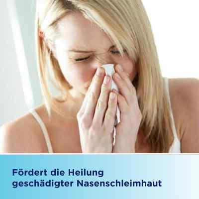 Bepanthen Augen- und Nasensalbe  bei Apotheke.de bestellen