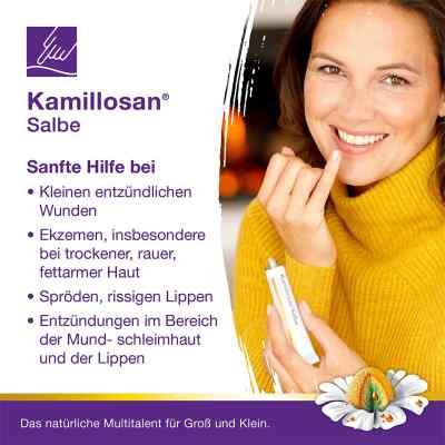 Kamillosan Salbe  bei Apotheke.de bestellen