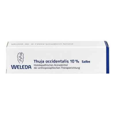 Thuja Occidentalis 10% Salbe  bei Apotheke.de bestellen