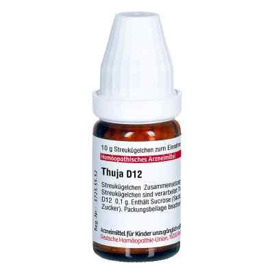 Thuja D12 Globuli  bei Apotheke.de bestellen