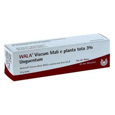 Viscum Mali e planta tota Salbe 3%  bei Apotheke.de bestellen