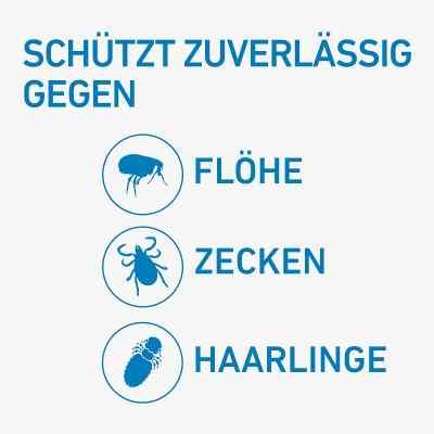 Frontline Spot on Hund 10 veterinär Lösung gegen Flöhe und Zecke  bei Apotheke.de bestellen