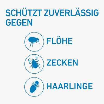 Frontline Spot on Hund 20 veterinär Lösung gegen Flöhe und Zecke  bei Apotheke.de bestellen