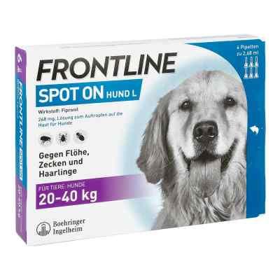 Frontline Spot on Hund 40 veterinär Lösung gegen Flöhe und Zecke  bei Apotheke.de bestellen