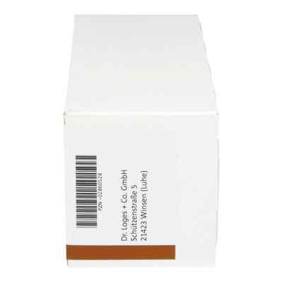 Procain Loges 1% Injektionslösung Ampullen  bei Apotheke.de bestellen