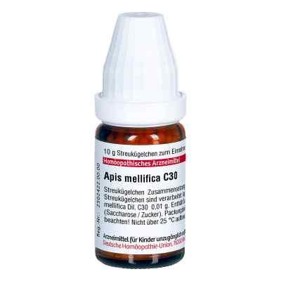 Apis Mellifica C 30 Globuli  bei Apotheke.de bestellen