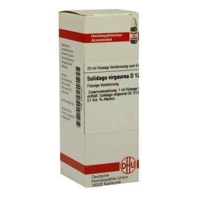 Solidago Virgaurea D12 Dilution  bei Apotheke.de bestellen