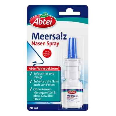 Abtei Meersalz Nasenspray standard  bei Apotheke.de bestellen
