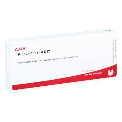 Pulpa Dentis Gl D12 Ampullen  bei Apotheke.de bestellen