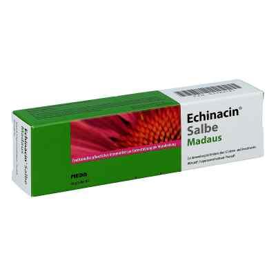 Echinacin Salbe Madaus  bei Apotheke.de bestellen