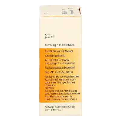 Synergon 27 Salvia N Tropfen  bei Apotheke.de bestellen