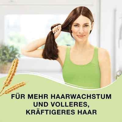 Priorin Kapseln bei Haarausfall  bei Apotheke.de bestellen