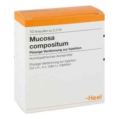 Mucosa Compositum Ampullen  bei Apotheke.de bestellen