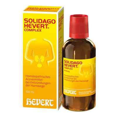Solidago Hevert Complex Tropfen  bei Apotheke.de bestellen