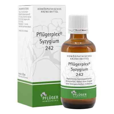 Pflügerplex Syzygium 242 Tropfen  bei Apotheke.de bestellen