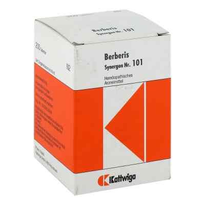 Synergon 101 Berberis Tabletten  bei Apotheke.de bestellen
