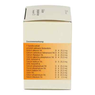 Synergon 21 Calcium phos. Tabletten  bei Apotheke.de bestellen
