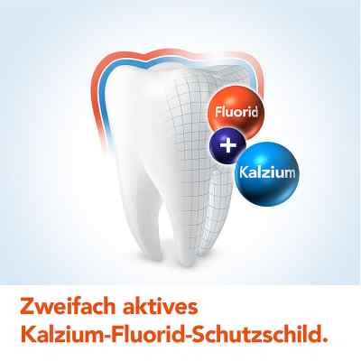 Elmex mentholfrei Zahnpasta mit Faltschachtel  bei Apotheke.de bestellen