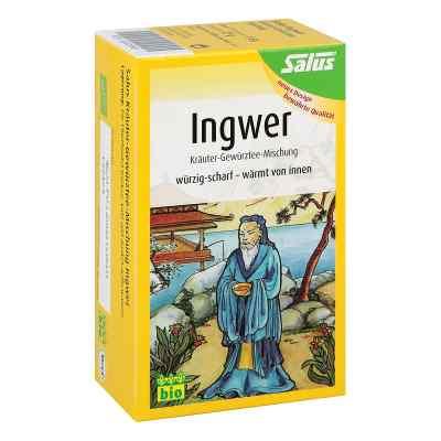 Ingwer Kräuter Gewürztee Salus  bei Apotheke.de bestellen