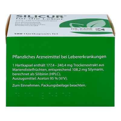 Silicur für die Leber  bei Apotheke.de bestellen